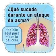 Cómo el asma afecta la respiración