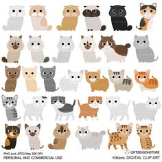 Kittens Digital clip art part 1 for Personal and Commercial use - INSTANT DOWNLOAD