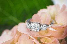 Past, Present, and Future collide with the new age of engagement, with #moissanite. http://www.moissanite.com/rings/three-stone-rings