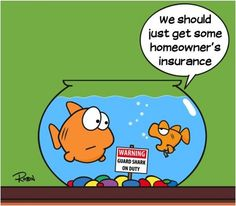 Hazard Insurance Quotes Beauteous A Killer Life Insurance Quote  Pinterest  Insurance Humor Life
