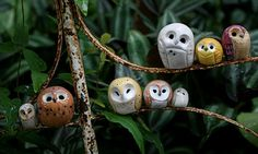 Mini Clay Owls...my next rattle balls.