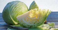 Opovrhované potraviny bývají zpravidla ty nejužitečnější, například zelí