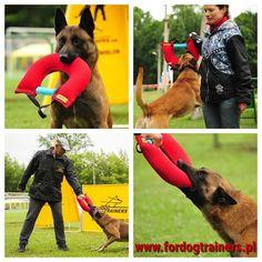 Z materiału ringowego, który zapewnia dużą wytrzymałość, posiada zawinięte i przeszyte wzmocnioną nicią brzegi tkaniny. Gryzak klin do tresury malinois wyposażony w twardą i miękką rączki, również ten przedmiot treningowy dla malinois posiada pętlę do której można przyczepić smycz i pracować z psem na odległości. Produkt szkoleniowy dla malinois idealny do rozwinięcia zapału, motywacji oraz rozwoju fizycznego psa. Trainers, Dogs, Tennis, Pet Dogs, Doggies, Athletic Shoes, Sweat Pants, Sneaker
