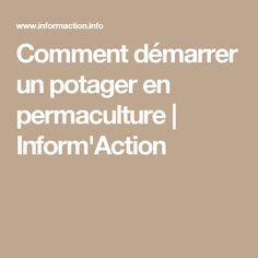 Comment démarrer un potager en permaculture   Inform'Action