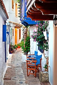Picturesque alley in Skopelos town, Skopelos island, Northern Sporades, Magnessia, Thessaly, Greece. • Millions of unique designs by independent artists. Find your thing. Greek Islands, Wood Print, Decorative Throw Pillows, Greece, Places To Go, Traditional, Table Decorations, Holiday, Pathways