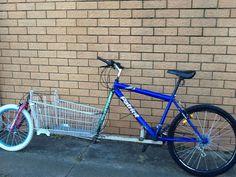 Home built cargo bike. Loving it!