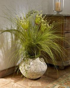 John-Richard Collection Allium Grass - traditional - plants - - by Horchow