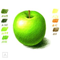 How to Color Realistically With Colored Pencils