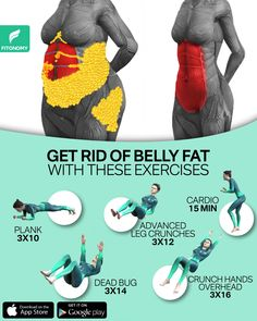 Summer Body Workouts, Full Body Gym Workout, Gym Workout Videos, Gym Workout For Beginners, Fitness Workout For Women, Gym Workouts, At Home Workouts, Lose Weight, Weight Loss