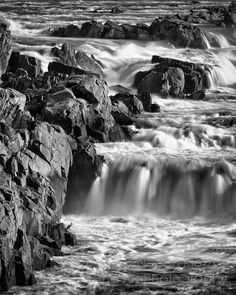 Can you spot the Heron? Potomac River Great Falls by NelsonRietzke River I, Potomac River, Whitewater Kayaking, Great Falls, Heron, Rafting, Art Photography, Waterfall, Wall