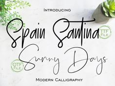 This item is unavailable Calligraphy Fonts, Modern Calligraphy, Font Software, Light Font, Bold Fonts, Modern Fonts, Alphabet And Numbers, Design Elements