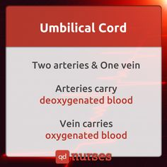 Do NOT confuse yourself with arteries and veins. --- Visit…