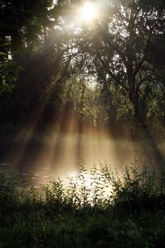 Beautiful sun shining on the river