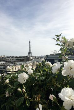 The Paris Guide - We The People — We The People
