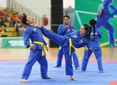 Martial, Viet Vo Dao, Sports, Martial Arts, Hs Sports, Sport