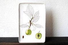 Mid Century Modern Italian Art White Pottery Tile Wall Decor - Sgraffito Modernist Signed Fruit Nut Tree, Made in Italy