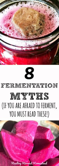 Are you afraid to ferment your own foods? Are you thinking fermentation is dangerous? Are you thinking fermentation is just not safe? Well, here are eight myths about fermentation that will change your mind! You might even decide to start fermenting your own foods after you read the truth about fermenting!