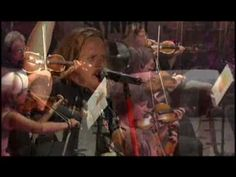 Lynyrd Skynyrd~Tuesday's Gone  I'll always remember, this song was played, over and over, on Tues., Sept. 11, 2001....