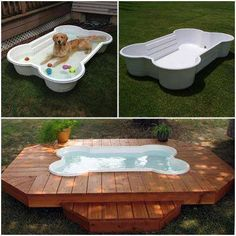 Bone Pool Your dog is way too hot in the summertime! Get him his own pool to cool off in.Your dog is way too hot in the summertime! Get him his own pool to cool off in. Dog Bone Pool, Doggie Pool, Puppy Pool, Dog Houses, Dog Life, Pet Care, Fur Babies, Your Pet, Cute Animals