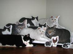 Makes me smile! Custom hypoallergenic pet pillow pet photo pillow by etheldora, $70.00