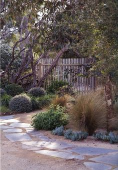 "Alina Turner uploaded this image to 'The house in Woodend'. See the albu… Alina Turner hat dieses Bild zu ""Das Haus in Woodend"" hochgeladen. Backyard Garden Design, Garden Landscape Design, Small Garden Design, Australian Garden Design, Australian Native Garden, Seaside Garden, Coastal Gardens, Dry Garden, Bush Garden"