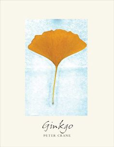 'Ginkgo: The tree that time forgot' by Peter Crane -  Ginkgo is a rare work about a tree unlike any other. Written by Peter Crane, a palaeobotanist and former head of the UK's Royal Botanic Gardens in Kew, his passion for the subject makes you want to go out and hug a ginkgo.