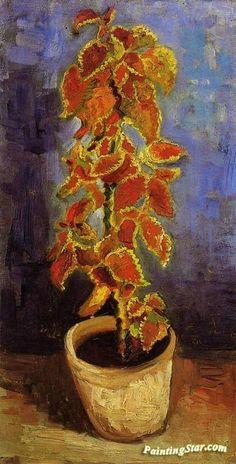 Coleus Plant in a Flower Pot Artwork by Vincent van Gogh