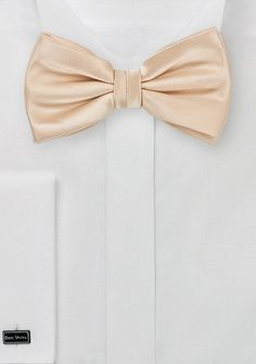 New Kids Bow Tie! Kid and Toddler Bow Tie in Champagne