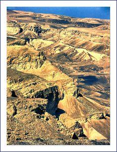 Paran Desert . Negev, Israel