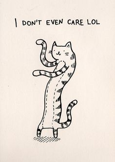 ♫ ♪♪ Put yur paws in the air like you just don't care ♫ ♪♪   (by ©Kitten Rain) everyday cat attitude