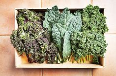 #Kale is incredibly nutrient-dense, offering impressive amounts of potassium, as well as #vitamins A, C, and K, in less than 35 calories.