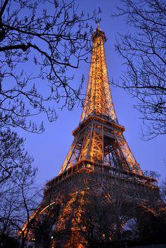 Eiffel Tower, evening - Patricia Pichon