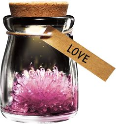 DIY Growing Crystal Wish Flower - SuperSmartChoices - 2
