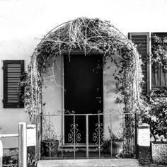 #milano #loves_italia #loves_street #loves_europe #loves_milano #igersmilano #milano_forever #milanodaclick #street #streetart #streetartist #murales #loves_street_art #streetphotography #loves_lombardia #milanodavedere #top_italia_photo #mymilano #top_lombardia_photo #milanocityufficiale #nikon_photography_ #nikonphotography #ig_milano #fotografimilanesi #milanostupendaufficiale #loves_truelife #loves_urban #vivomilano #vivo_italia #welovemilan by ____.aliph