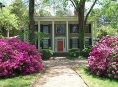 Enfield NC Bed and Breakfast off I-95, east of Raleigh NC and south of Roanoke Rapids NC and Lake Gaston NC.  North of Rocky Mount!http://www.manorbnb.com/aboutus/