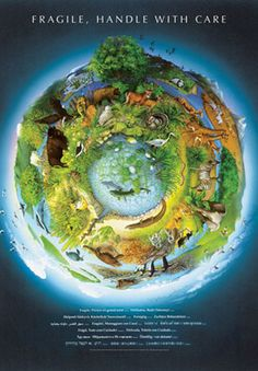 Fragile Earth Laminated Poster picture