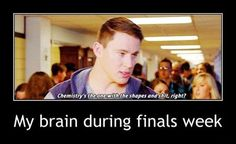 54 Memes for Finals Week It took 17 hours. I hope you like it. Very relevant searches right now. Drain it into my veins. So benevolent. Here's a cool jingle you heard on the radio a week ago though. Get this over with. What is this?! I will do it or I will die. Gotta …