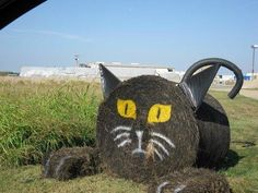 fall hay bale decorating ideas - Google Search