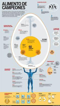 #infografia #Huevo, alimento de campeones