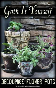 DIY Halloween Inspired Skull and Spider Flower Pots | How to Decoupage with Napkins | Gothic Garden | Skull Planter | www.MeandAnnabelLee.com