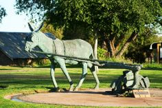 Donkey statue in Upington