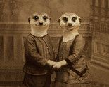 ferrets in love. thought of McKenna!