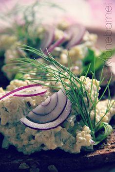 Quinoa er total sund og mætter godt, og det spises ofte som tilbehør i stedet for ris, kartofler eller pasta. Men har du aldrig prøvet at spise det på denne måde, som pålæg, skal du virkelig glæde …