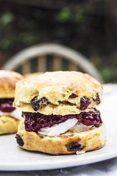 My Vibrant Kitchen | Vegan Cranberry Scones | http://myvibrantkitchen.com