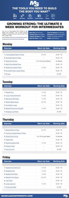 (Click through to download PDF!) Are you an intermediate lifter looking to get bigger and stronger? This 8 week workout program is exactly what you need to build more lean muscle mass!