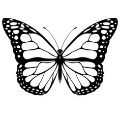 clipart of a black and white butterfly 29 royalty free vector rh pinterest com butterfly clipart black and white outline black and white butterfly clipart free