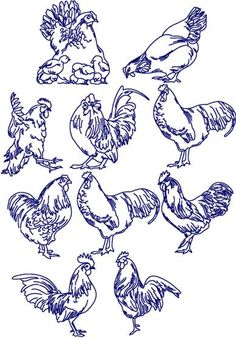 Advanced Embroidery Designs - Bluework Chicken Set