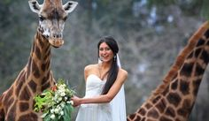 zoo wedding :)
