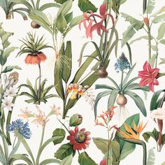 tapete ps floral bl tter palmen v gel tropisch 05550 40 beige gr n rot braun kitchen. Black Bedroom Furniture Sets. Home Design Ideas