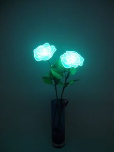 neon, installation, art, blue, green, teal, turquoise, flowers, leaves. dark